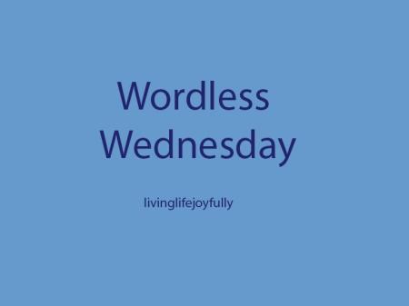 WordlessWednesday